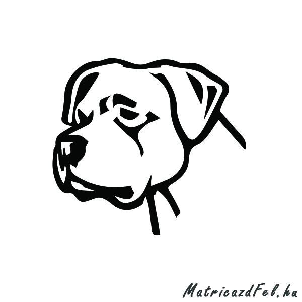 argentin-dog-matrica9
