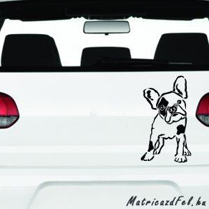 Francia bulldog matrica 7