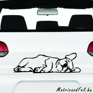 Francia bulldog matrica