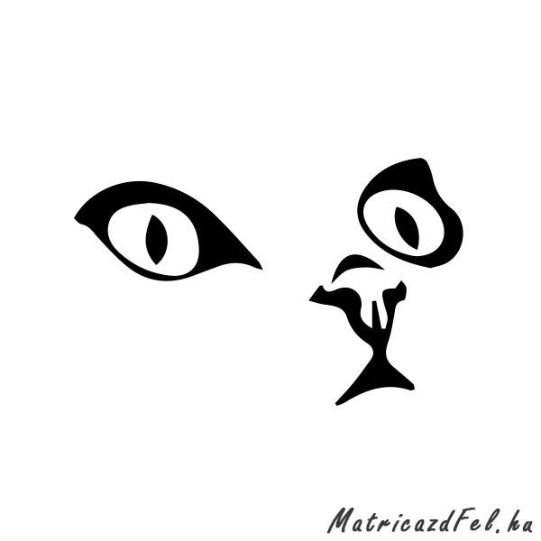 macska-matrica13
