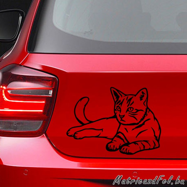 macska-matrica47