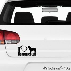 Border collie matrica 6
