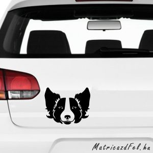 Border collie matrica 3