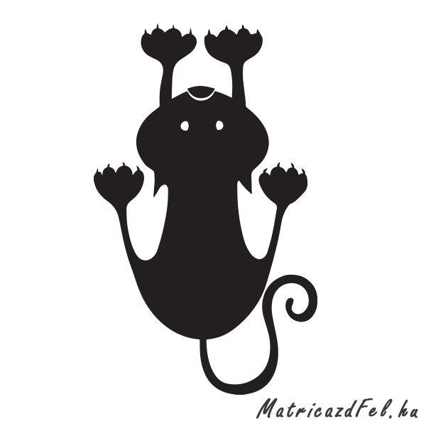 macska-az-auton-matrica