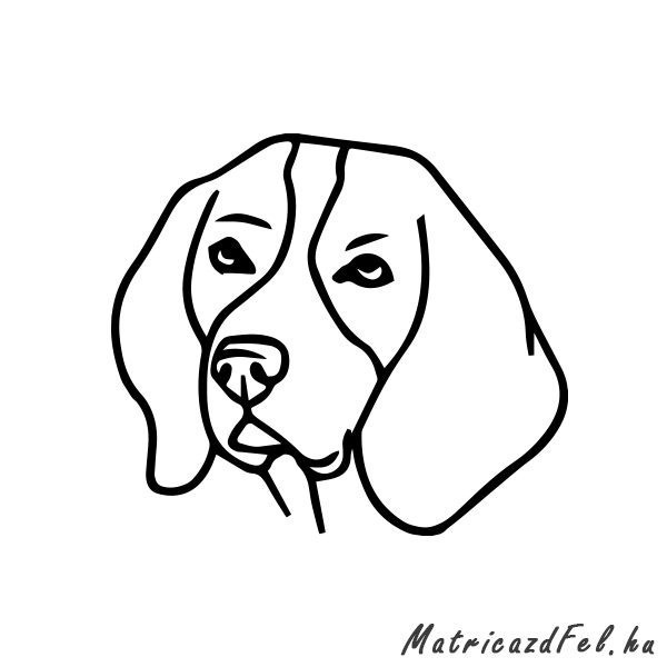 beagle-matrica30