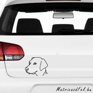 Labrador matrica 7