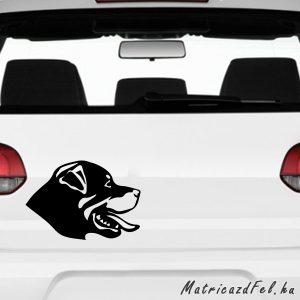 Rottweiler matrica 12