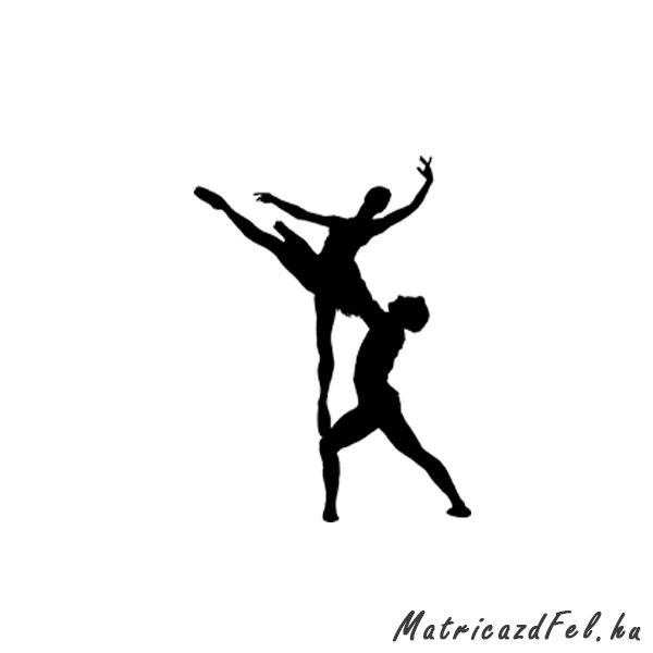 balett-matrica11