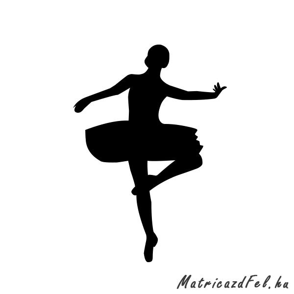 balett-matrica5